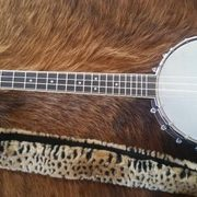 This is a Banjolele musical instrument